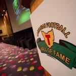 AFL Hall of Fame 2013-19